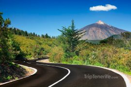 Teide vue du nord