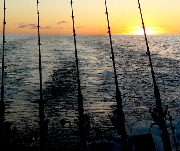 No Limit - Pêche à Tenerife