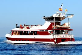 Royal Delfin Boat